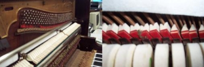 Soundboard and Dampers - After